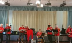 flaming-ukes-amberwoodcarehome